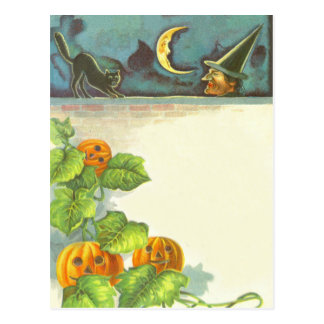 Pumpkin Vines Jack O Lantern Witch Black Cat Postcard