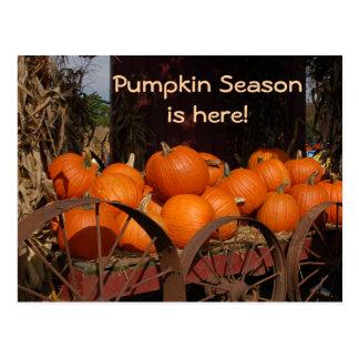 Pumpkin Wagon Photo Postcard