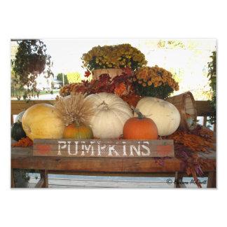 Pumpkin Welcome Print Photo Art