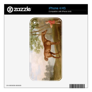 Pumpkin with a Stable-Lad, 1774 (oil on panel) Decal For The iPhone 4S