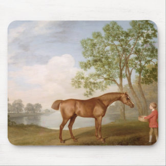 Pumpkin with a Stable-Lad, 1774 (oil on panel) Mouse Pad