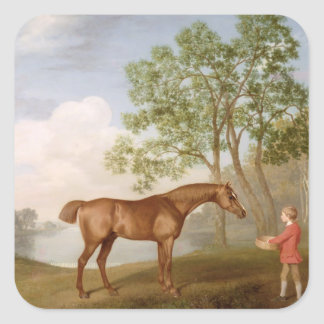 Pumpkin with a Stable-Lad, 1774 (oil on panel) Square Sticker