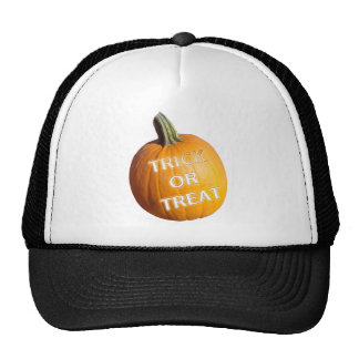 Pumpkin with Trick or Treat on it Mesh Hat