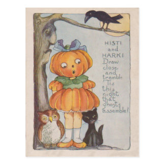 Pumpkinhead Jack O Lantern Crow Black Cat Owl Postcard