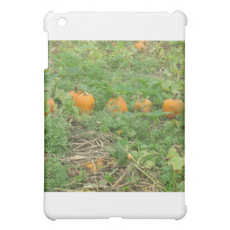 Pumpkins all in a row cover for the iPad mini