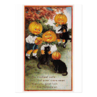 Pumpkins and Cats Vintage Halloween Postcard