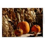 Pumpkins and Corn Greeting Card