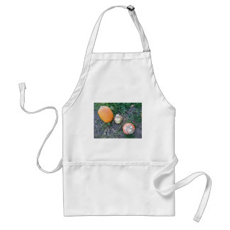 Pumpkins and Gourds Adult Apron