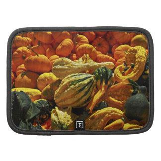 Pumpkins and gourds folio planner