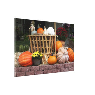 Pumpkins and Mum Autumn Picture Canvas Print