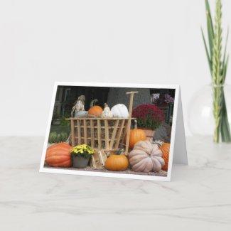 Pumpkins and Mum Autumn Picture Card