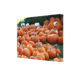 Pumpkins and Mums Autumn Harvest Photography Canvas Print