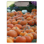 Pumpkins and Mums Autumn Harvest Photography Clipboard