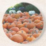 Pumpkins and Mums Autumn Harvest Photography Coaster