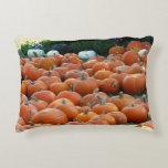 Pumpkins and Mums Autumn Harvest Photography Decorative Pillow