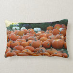 Pumpkins and Mums Autumn Harvest Photography Lumbar Pillow