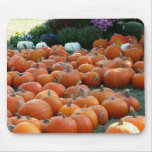 Pumpkins and Mums Autumn Harvest Photography Mouse Pad