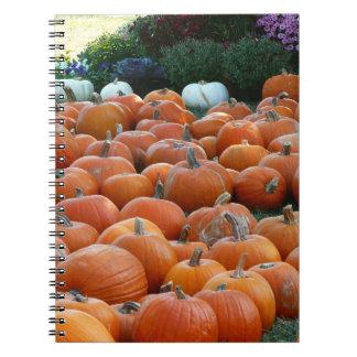 Pumpkins and Mums Autumn Harvest Photography Notebook