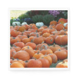 Pumpkins and Mums Autumn Harvest Photography Paper Napkin