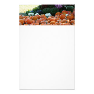 Pumpkins and Mums Autumn Harvest Photography Stationery