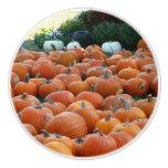 Pumpkins and Mums Ceramic Knob