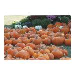 Pumpkins and Mums Placemat