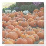 Pumpkins and Mums Stone Coaster