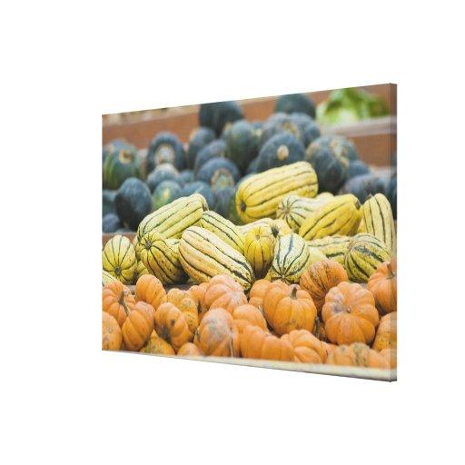 Pumpkins and squash on display at farmer's canvas prints