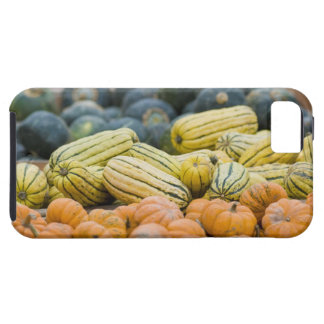 Pumpkins and squash on display at farmer's iPhone SE/5/5s case