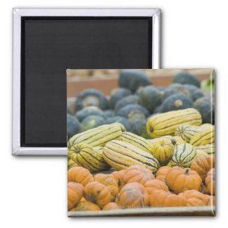 Pumpkins and squash on display at farmer's magnets