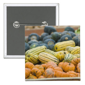 Pumpkins and squash on display at farmer's pinback button
