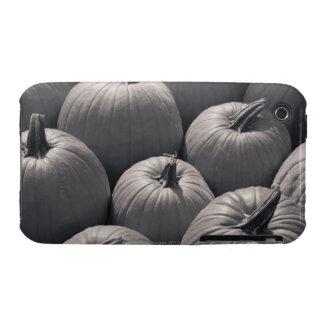Pumpkins at a local farmer's market Case-Mate iPhone 3 case