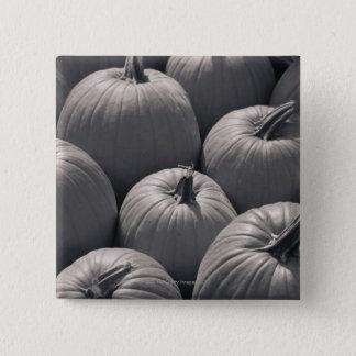 Pumpkins at a local farmer's market pinback button