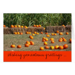 Pumpkins, Corn and Hay Autumn Greetings Card