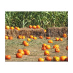 Pumpkins, Corn and Hay Autumn Harvest Photography Canvas Print
