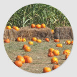 Pumpkins, Corn and Hay Autumn Harvest Photography Classic Round Sticker