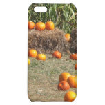 Pumpkins, Corn and Hay Autumn Harvest Photography iPhone 5C Cover