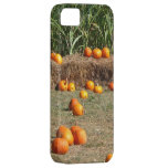 Pumpkins, Corn and Hay Autumn Harvest Photography iPhone SE/5/5s Case