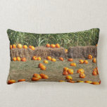 Pumpkins, Corn and Hay Autumn Harvest Photography Lumbar Pillow