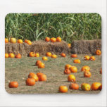 Pumpkins, Corn and Hay Autumn Harvest Photography Mouse Pad