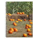 Pumpkins, Corn and Hay Autumn Harvest Photography Notebook