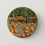 Pumpkins, Corn and Hay Autumn Harvest Photography Pinback Button