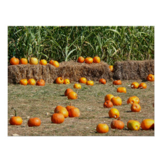 Pumpkins, Corn and Hay Autumn Harvest Photography Poster