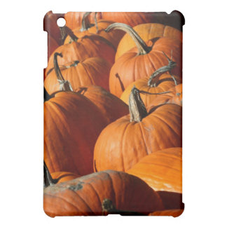 Pumpkins Cover For The iPad Mini