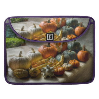 Pumpkins Decor MacBook Pro Sleeve