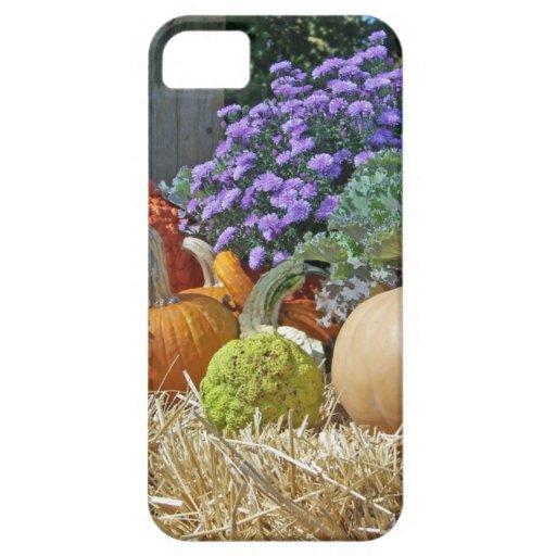 Pumpkins Fall Autumn Purple Flowers Peace Love Art iPhone 5/5S Cases