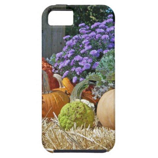 Pumpkins Fall Autumn Purple Flowers Peace Love Art iPhone 5 Cases