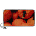 Pumpkins for Fall Mini Speakers