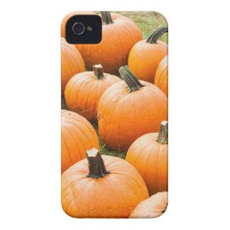 Pumpkins for Sale at a Farmer s Market Case-Mate iPhone 4 Case