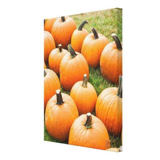 Pumpkins for Sale at a Farmer's Market Canvas Print